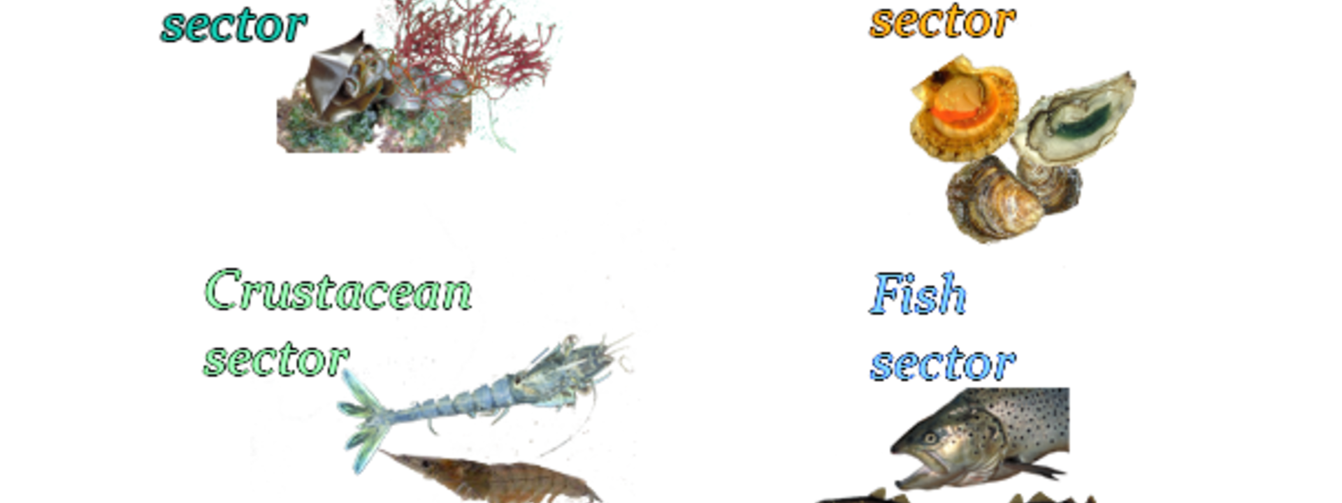 Aquaculture sectors